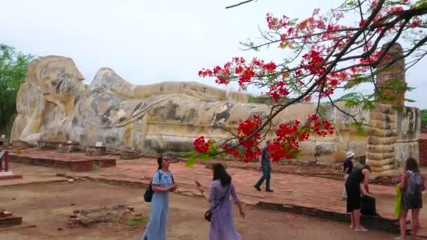 Ayutthaya, Thaiföld-május 14, 2019: az óriás szobra reclining Buddha nevű Wat Lokaya Sutha mögött virágzó ága lángfa, május 14-én Ayutthaya