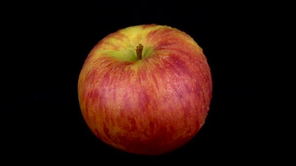 Voda se stříká na červené jablko. Na černém izolovaném pozadí