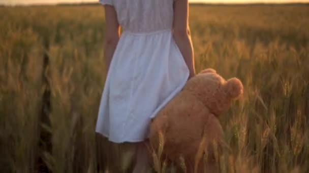A young woman walks through a wheat field with a teddy bear at sunset. Close-up of a girl holding a teddy bear in her hand.