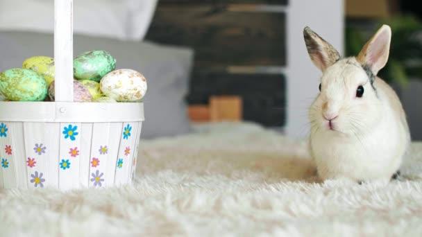 Húsvéti nyúl és a tojás húsvéti kosár