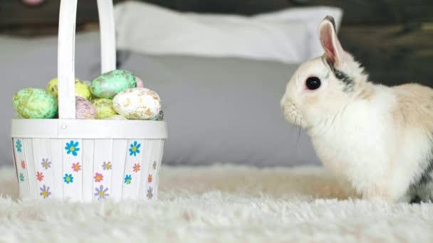 Boční pohled na velikonočního zajíčka a košík na velikonoční vajíčka