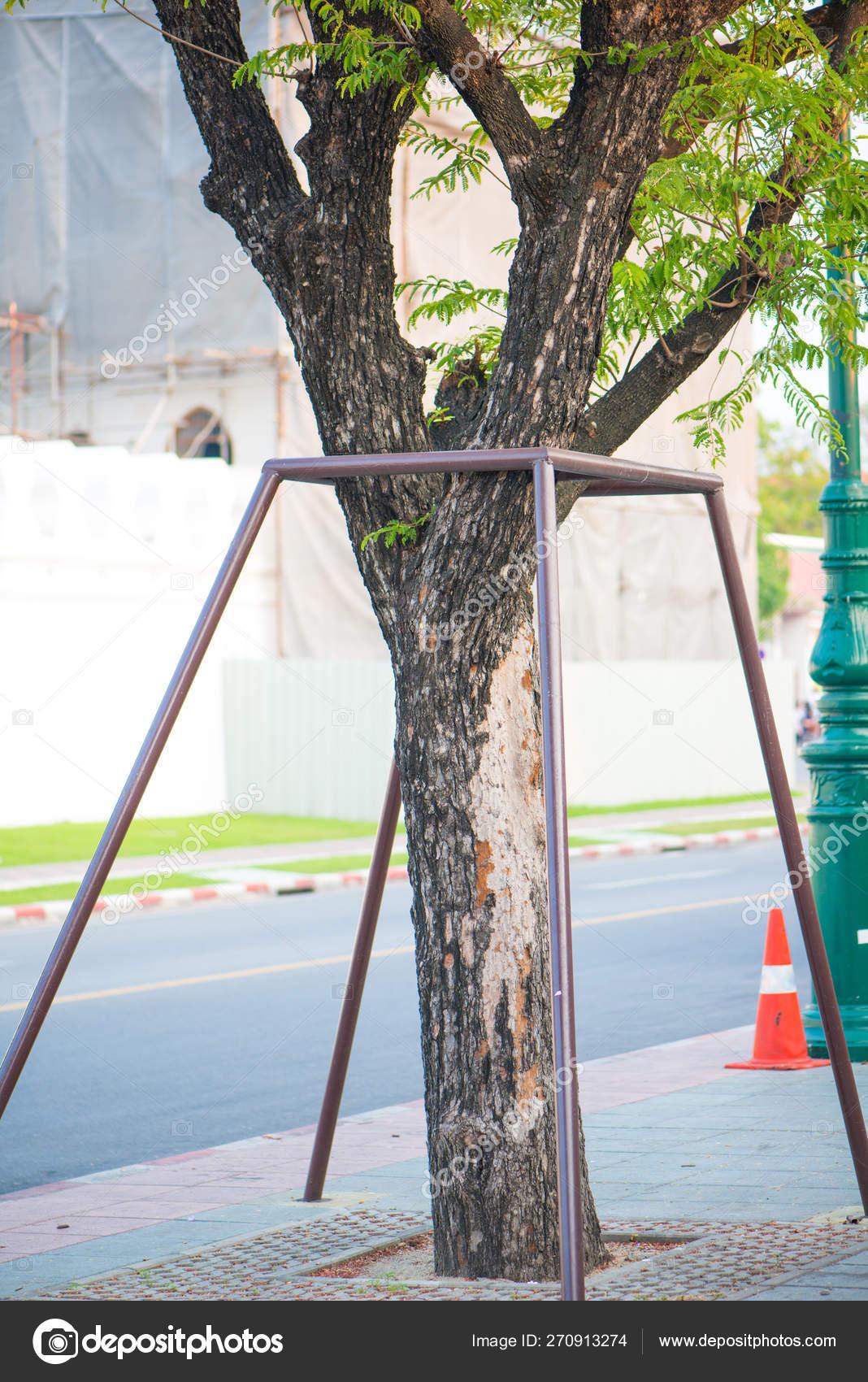 Steel pipe support tree in garden — Стоковое фото