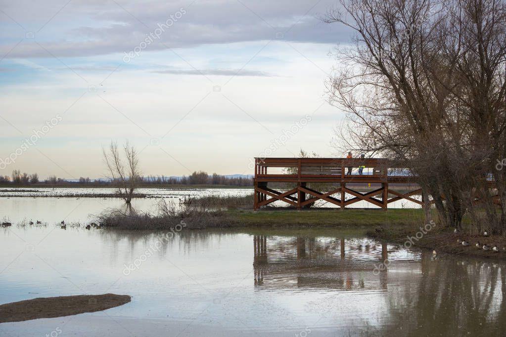 Wildlife viewing platform at Llano Seco Unit, Sacramento National Wildlife Refuge, California