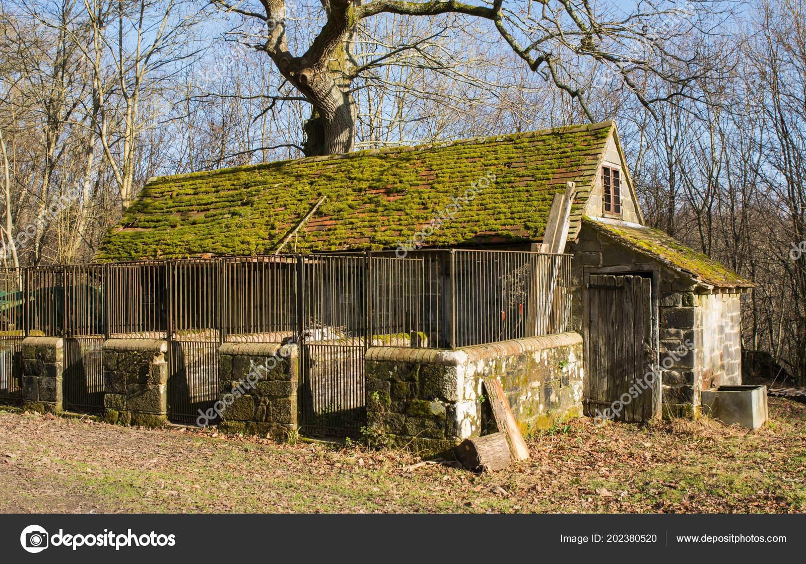 Old Disused Stone Barn Animal Pens Woodland English