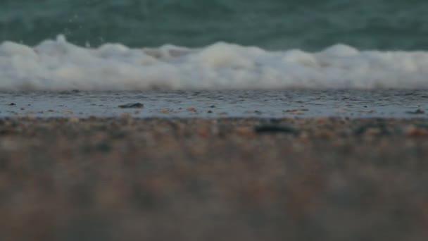tengeri hullám, a háttérben a homok és a tengeri kagylókból