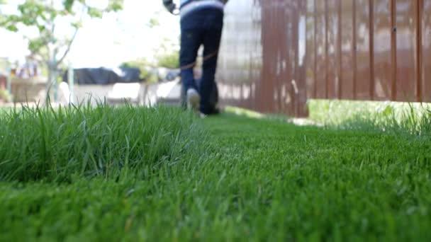 Zelená tráva v popředí a muž s sekačkou v pozadí. Nízký úhel záběru