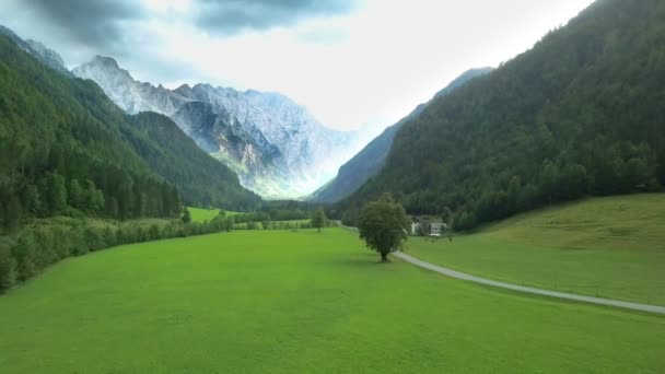Aerial: Flying in front of beautiful green Logarska valley in Slovenia. Filmed on trip in Logarska dolina valley in Slovenia.