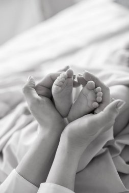 Mom's hands are holding little cute legs of a newborn baby at home on a white bed. Happy motherhood