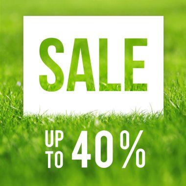 Spring sale poster. 40 off discount promotion sale.