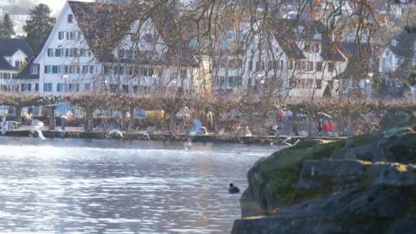 Malebné město Wollerau Švýcarsko bydlení a Lake Zurich, Švýcarsko