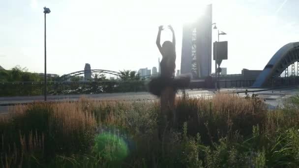 Graceful ballerina dancing on the grass of a roundabout. Long shot.