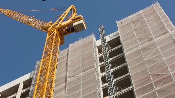 Construction Crane and Building Scaffold