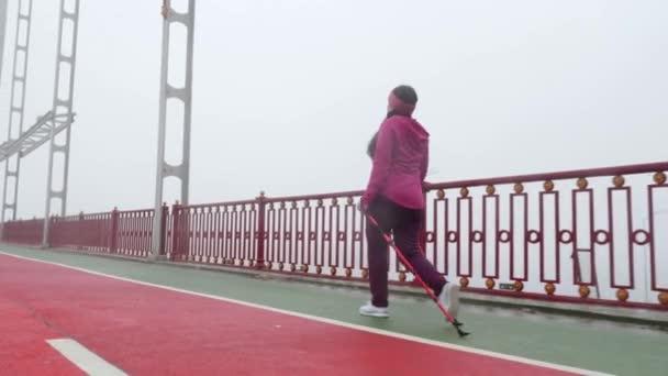 Severská chůze. Mladá čubka Kavkazská žena, která se při pěší túry s severskými póly. Zadní strana následovat výstřel. Zpomaleně