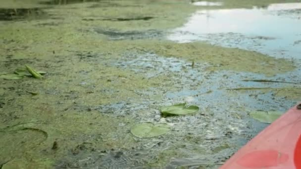 Kajak evező evez a vízben. A lapát a hínárba kapaszkodik nyugodt folyóvíz alatt. A nő evez kenuban. evezünk a folyón. Turista úszik a hajón a folyón a napsütéses napon. Vízi turizmus