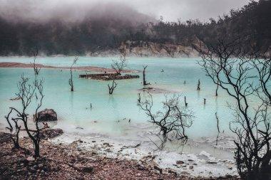 Foggy scenery of White Crater in Bandung Jawa Indonesia