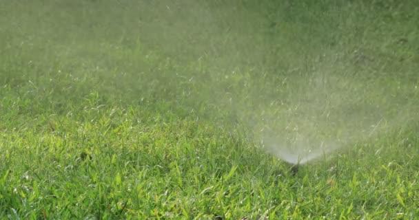 Automatické sprinklery zavlažování zelené trávy