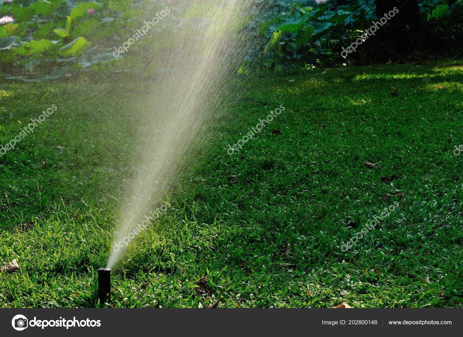 Garten Bewasserung System Spray Bewasserung Rasen Stockfoto C Lzf