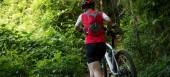 Fotografie Cyklista nesoucí horské kolo v lese