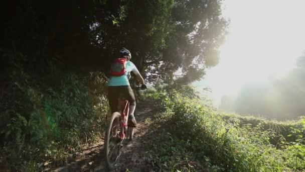 Cyklistka jízdní horské kolo na letní lesní stezka