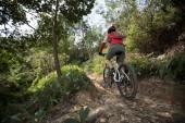 Fotografie cyklista na koni horské kolo na kamenité stezce na slunečný den