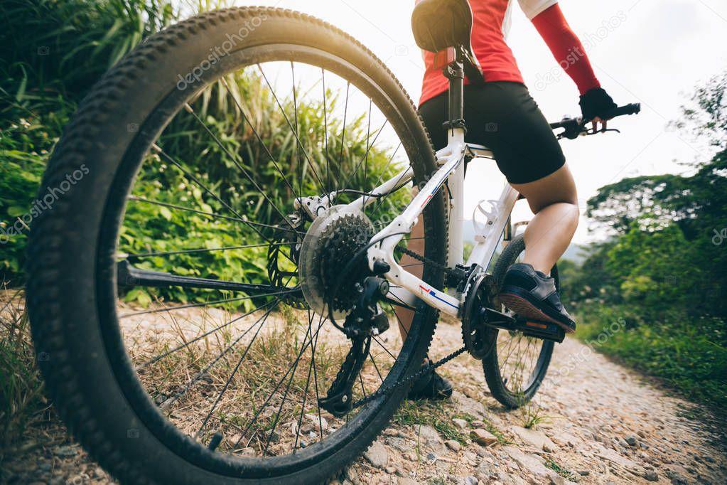 победили, сильнее оргазм при езде на велосипеде любителей высококачественного порно