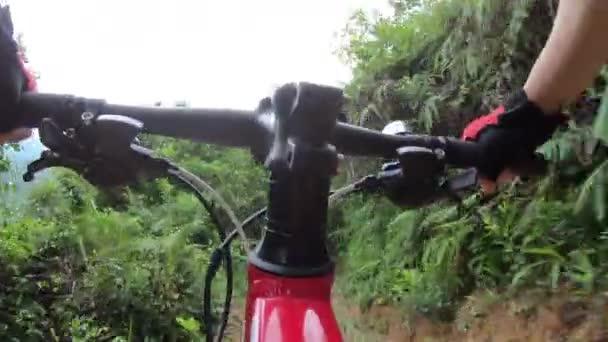 Cyklista na lyžích na horských kolech na tropické lesní stezce