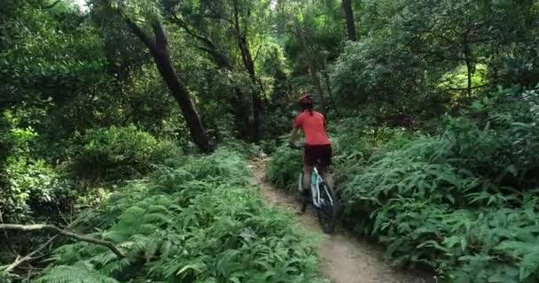 Běžecké cyklistiky, cyklista na horských kolech na tropické lesní stezce