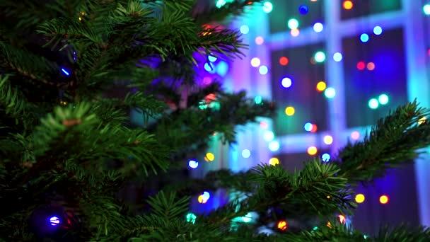 Ruka dekorace na vánoční stromeček s vánoční záře světel.