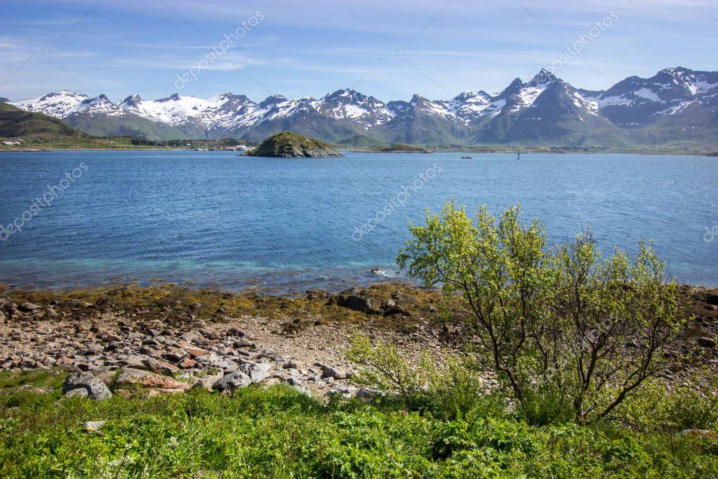 beautiful summer views of Lofoten islands