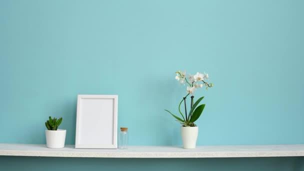 Moderní výzdoba pokojů s obrázkem rámu. Bílá šelba proti pastelové tyrkysové stěně s vroubené orchidejí a ruční vyzvedání šťavnaté rostliny.