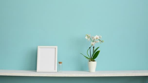 Modern room decoration with Picture frame mockup. White shelf against pastel turquoise wall with potted orchid and hand putting down succulent plant.