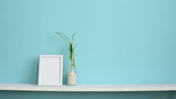 Modern room decoration with Picture frame mockup. White shelf against pastel turquoise wall with spider plant cuttings in water and hand putting down schefflera.