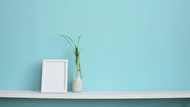 Modern terem dekoráció, képkeret. Fehér polc a pasztell türkiz fal a pók növényi dugványok vízben és kézzel üzembe le kígyó növény.