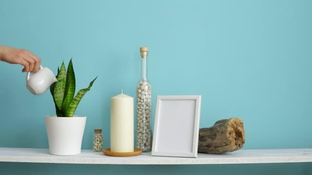 Moderní výzdoba pokojů s obrázkem rámu. Bílá police proti pastelové tyrkysové stěně se svíčkami a balvany v lahvi. Ručně zalévání hadí rostlina