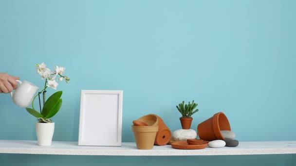 Moderní výzdoba pokojů s obrázkem rámu. Bílá police proti pastelové tyrkysové stěně s keramickými a šťavnaté rostlinnou. Ručně zalévaný závod orchidejí.