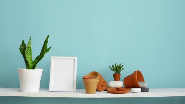 Moderní výzdoba pokojů s obrázkem rámu. Bílá police proti pastelové tyrkysové stěně s keramickými a šťavnaté rostlinnou. Ručně zalévání hadí rostlina.