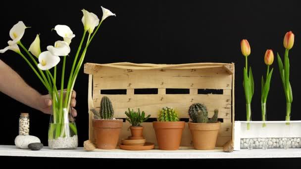 Decorazione moderna della camera con cornice di immagine mockup. Scaffale contro parete nera con candela decorativa, vetro e rocce. Mano mettendo tulipani in vaso.
