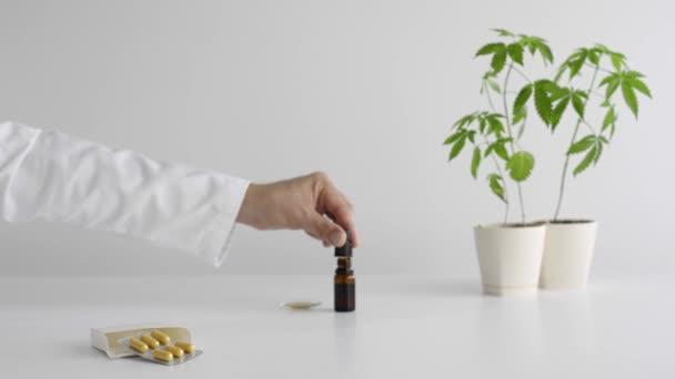weißer Tisch mit Marihuanapflanze in Keramik und Schachtel mit cbd-Pillen. Hand lässt cbd-Öl von der Pipette auf das Uhrglas fallen. Gesundheits- und Medizinkonzept.