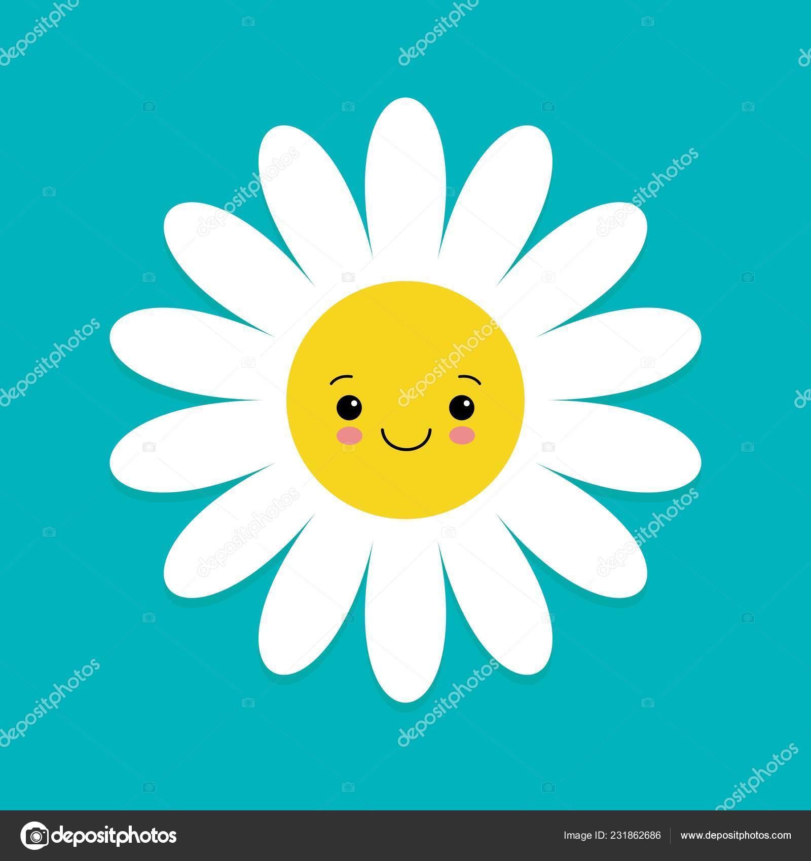 White Daisy Kamille Mit Gesicht Kopf Niedliche Blume