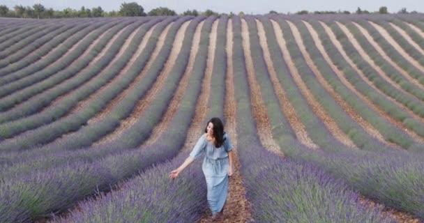 A szép, fiatal lány egy kék ruhás sétál a mezőn, a levendula, hosszú göndör hajú, mosoly, öröm, hegyek a háttérben, a kertész, a fák, a perspektíva a levendula ház