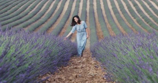 Krásná mladá dívka v modrých šatech chodí přes pole levandule, dlouhé kudrnaté vlasy, úsměv, radost, hory v pozadí, dům zahradníka, stromy, perspektivy levandule