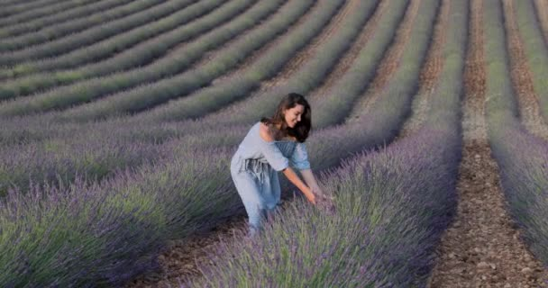 The beautiful young girl in a blue dress walks across the field of a lavender, long curly hair, smile, pleasure, mountains on background, a house of the gardener, trees, perspective of a lavender