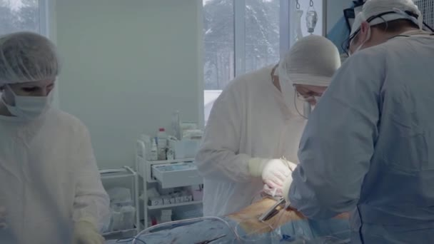 Medical staff during the operation