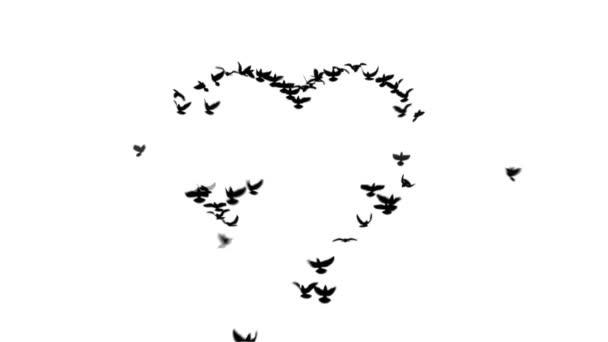 Srdce s matným holubice
