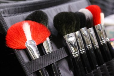 A set of makeup brushes in a case. Brushes black, red and white.