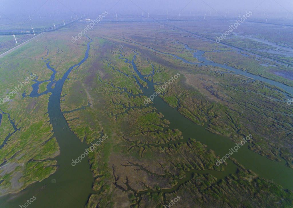 Aerial view of the scenery of the intertidal zone resembling withered branches near south Yellow Sea, in Rudong county, Nantong city, east China's Jiangsu province, 7 May 2017