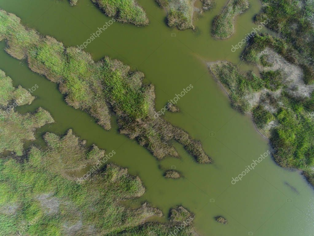 Aerial view of the scenery of the intertidal zone resembling blood vessels near south Yellow Sea, in Rudong county, Nantong city, east China's Jiangsu province, 7 May 2017