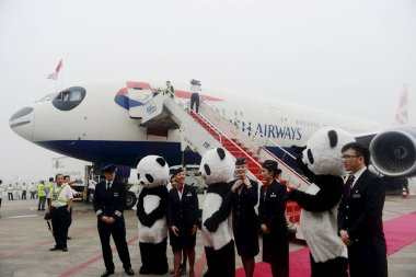 Cabin crew members of Flight BA89 from London to Chengdu of British Airways stand in front of the airplane painted to look like a Giant Panda at the Chengdu Shuangliu International Airport in Chengdu, southwest Chinas Sichuan province, 23 September 2