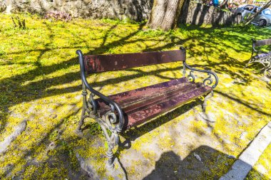 Wood benches on the park