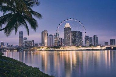 Lights of modern asian city. Palm tree against Singapore skyline at dusk.